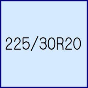 225/30R20