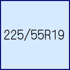 225/55R19
